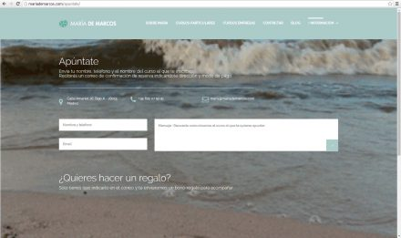 disenador-web-madrid-52